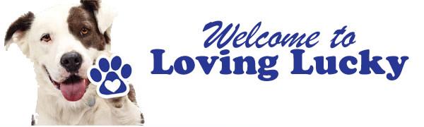 LL-Logo-5.jpg