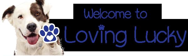 LL-Logo-6.png